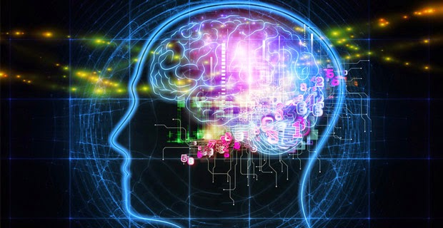 All You Need To Know About Alpha Brainwaves