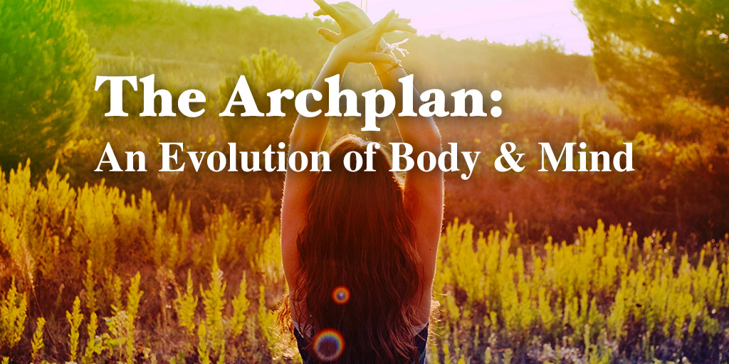 The Archplan: An Evolution of Mind and Body