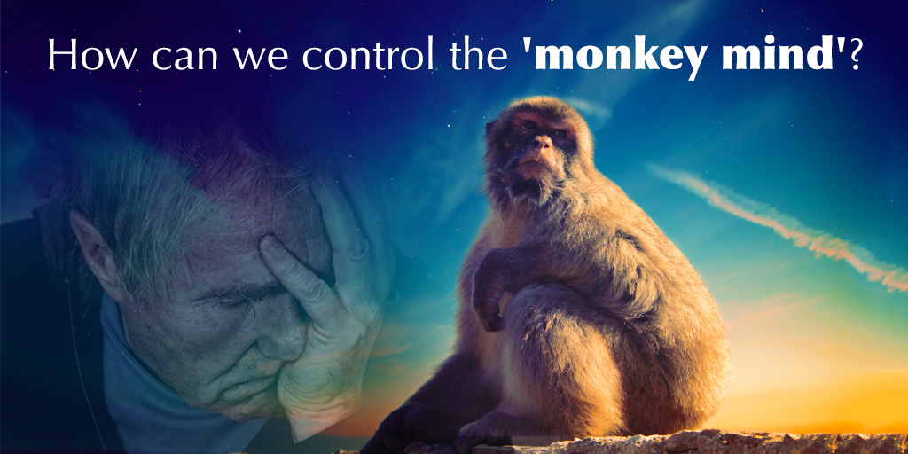 How Can We Control the 'Monkey Mind'?