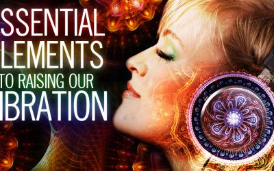 Essential Elements to Raising Our Vibration